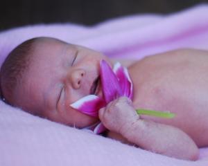 naturopathicmedicinefertility