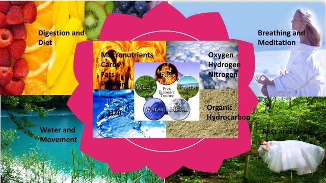 health-elements